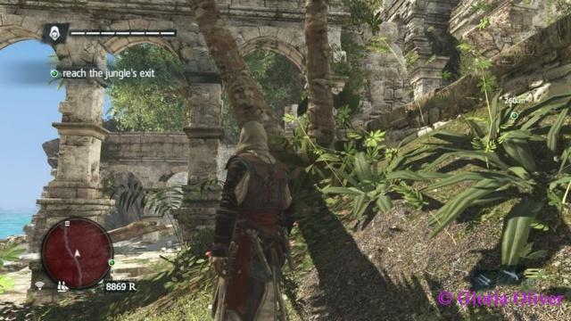 Assassin's Creed - Black Flag - ruins