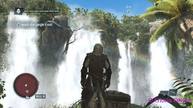 Assassin's Creed - Black Flag - waterfalls